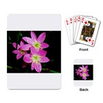 landat_01 Playing Cards Single Design