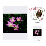 landat_02 Playing Cards Single Design