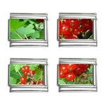 other_photos_3 9mm Italian Charm (4 pack)