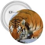 tiger_4 3  Button