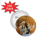 tiger_4 1.75  Button (100 pack)