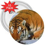 tiger_4 3  Button (10 pack)