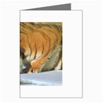 tiger_4 Greeting Card