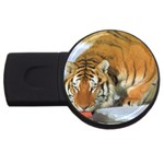 tiger_4 USB Flash Drive Round (2 GB)