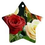 wallpaper_12974 Ornament (Star)