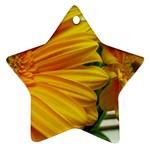 wallpaper_18294 Ornament (Star)