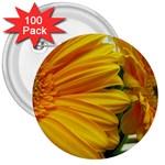 wallpaper_18294 3  Button (100 pack)
