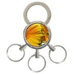 wallpaper_18294 3-Ring Key Chain