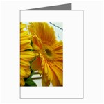 wallpaper_18294 Greeting Cards (Pkg of 8)