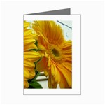 wallpaper_18294 Mini Greeting Cards (Pkg of 8)