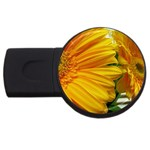 wallpaper_18294 USB Flash Drive Round (4 GB)
