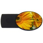wallpaper_18294 USB Flash Drive Oval (4 GB)