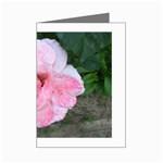 wallpaper_17147 Mini Greeting Cards (Pkg of 8)