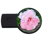 wallpaper_17147 USB Flash Drive Round (4 GB)