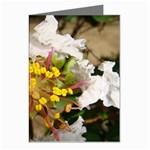 wallpaper_17805 Greeting Card