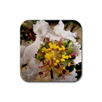 wallpaper_17805 Rubber Square Coaster (4 pack)