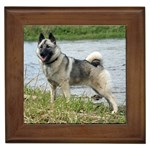 Norwegian Elkhound Gifts, Dog Merchandise, Custom Dog Gift Ideas, Breed Information & Dog Photos