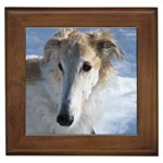 Borzoi Gifts, Dog Merchandise, Custom Dog Gift Ideas, Breed Information & Dog Photos