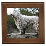 Komondor Gifts, Dog Merchandise, Custom Dog Gift Ideas, Breed Information & Dog Photos