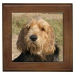 Otterhound Gifts, Dog Merchandise, Custom Dog Gift Ideas, Breed Information & Dog Photos