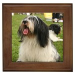 Polish Lowland Sheepdog Gifts, Dog Merchandise, Custom Dog Gift Ideas, Breed Information & Dog Photos