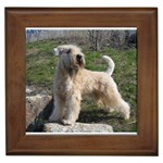 Soft Coated Wheaten Terrier Gifts, Dog Merchandise, Custom Dog Gifts Ideas, Breed Information & Dog Photos